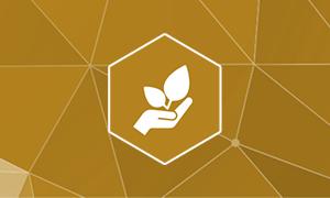 Logo Fundraising & Stiftungen